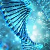 Спортивная генетика  и генетический паспорт