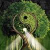 Психология Творцов собственной реальности