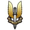SAS - На страже будущего