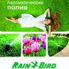 Автополив RAIN BIRD в Беларуси