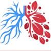 Трансплантация легких в России