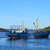 Самая лучшая морская рыбалка в Мурманске