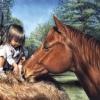 """Приют для лошадей """"ЭЛЛИНА"""""""