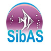 SibAS - аквариумные рыбки Красноярска