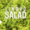Lingvo Salad | English Speaking Club