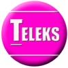 Студия веб дизайна Телекс