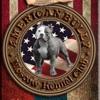 American Bully Moscow Kennel Club