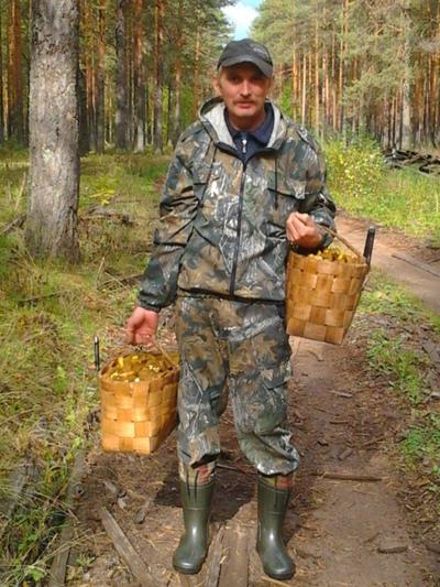 Александр Виноградов, Хвойная