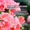 """Питомник растений """"Розовый сад"""""""
