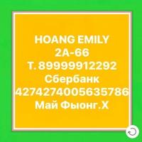 HoangEmily