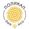 ПолиКап: биоразлагаемые эко-крышки для кофе.