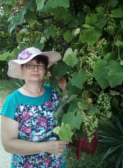 Ga-Lina Zhuravleva, Kotlas
