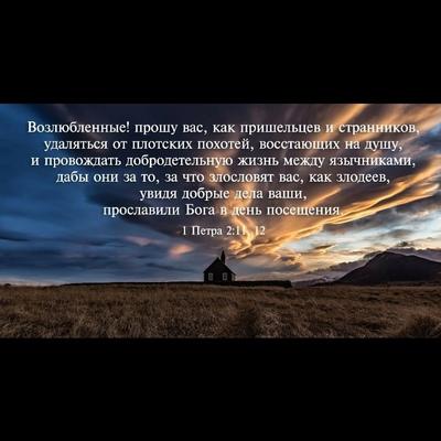Саша Ботт, Одинцово