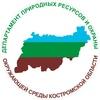 ДПР Костромской области