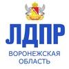 ЛДПР — Воронежская Область