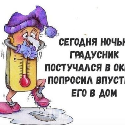 Надежда Николаевп, Новосибирск