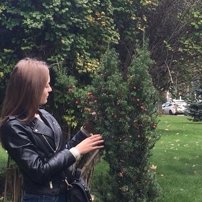 Катерина Носенко, Краснодар