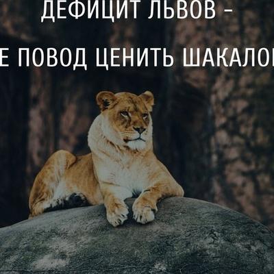 Хасанов Нодирбек, Курган