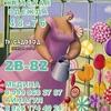 Медина Суюнбаева 2в-82