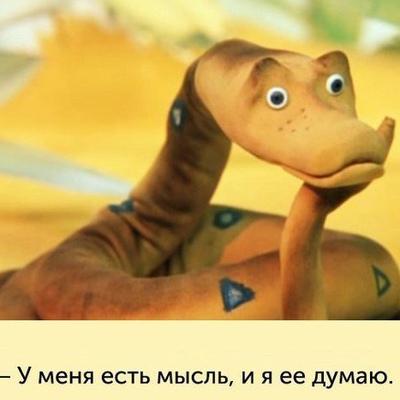 Ксения Широкая, Краснодар