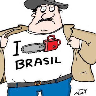 Jorge Sarava, Brasília