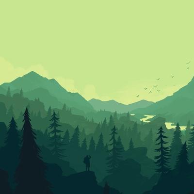 Forest Coniferous