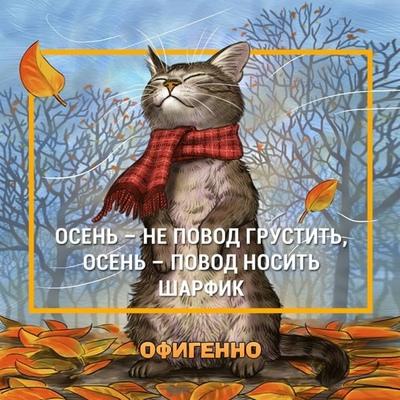 Ирина Шутько