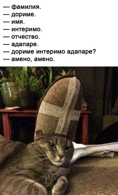 Паписто Фалли, Мурманск