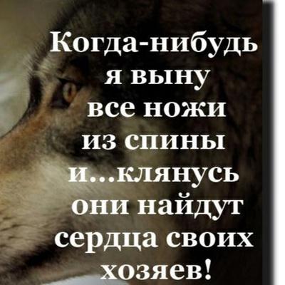 Александр Невский, Брест
