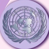 Историческая Модель ООН РГГУ