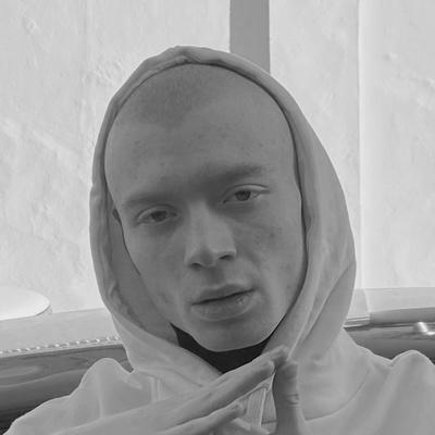 Александр Нискубин