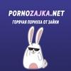 PornoZajka.net - Скачать порно видео на телефон