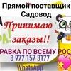 Саидобид Умронов 22-92