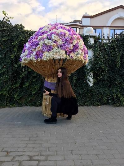 Ольга Дмитриева, Москва