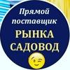 Колья Ибрагимов