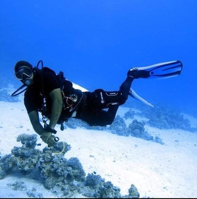 Mustafa M-R-Diver